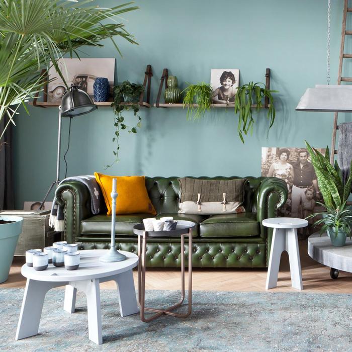 salon bohème chic qui adopte la végétation à la maison et la couleur canard douce et soutenue sur les murs