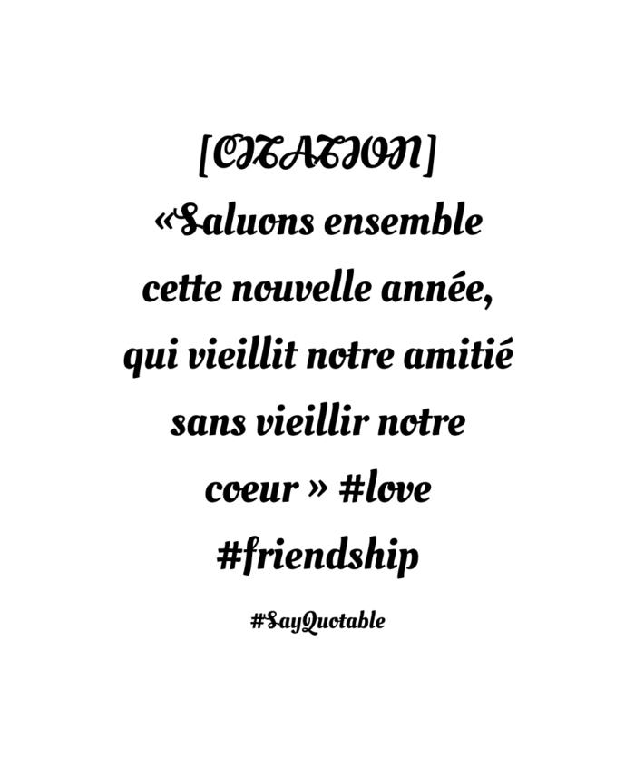 De bons amis citation d amitié forte citation courte amitié image amie quotable