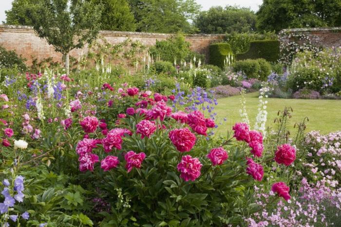 amenagement jardin, gazon avec bordure parterre de roses et d autres fleurs à côté d un mur de clôture en briques, végétation florissante