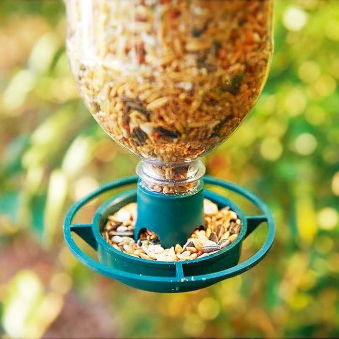 distributeur de graines pour oiseaux, bouteille en plastique transformée en mangeoire