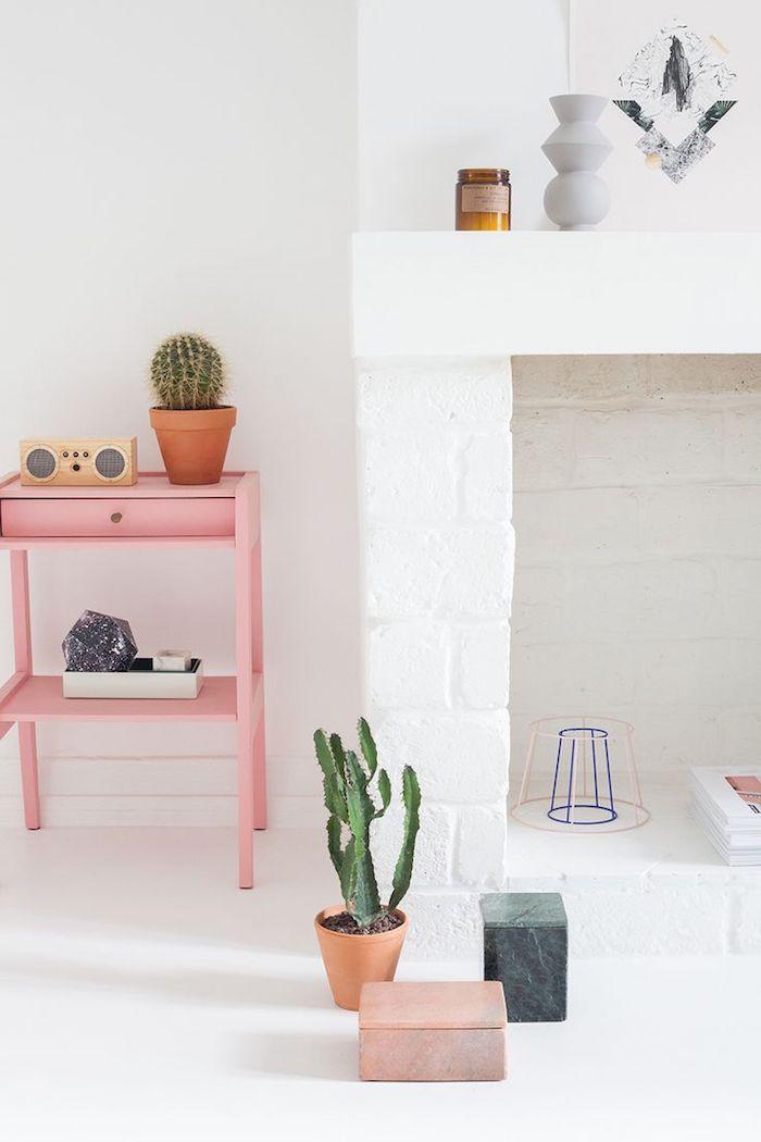 objets décoratifs dans le salon aux murs blancs, cheminée en briques peinte en blanc, cactus dans pot à fleur en terre cuite