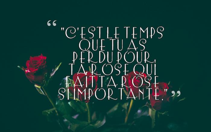 sentiment amoureux, fond d'écran noir avec roses rouges, photo romantique avec lettres blanches