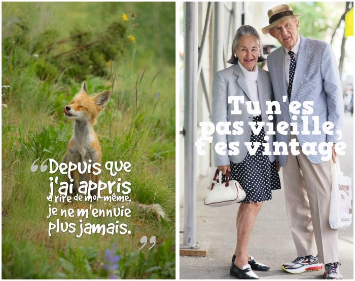 blague courte, photo renard dans la nature avec citation rire, photo vieux couple avec lettres pour rire