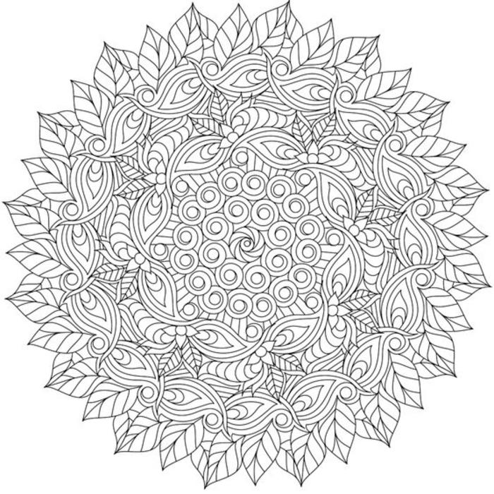 un mandala à colorier floral d'une grande complexité représentant un enchevêtrement de feuilles