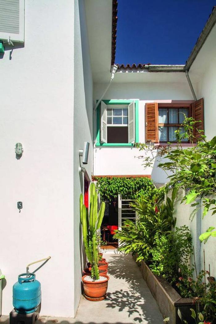 aménager son jardin dans un coin derrière la maison avec des grands cactus