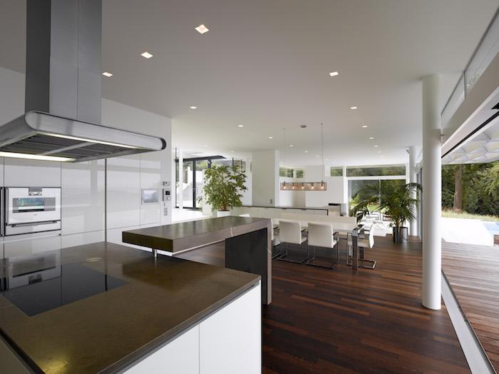 decoration interieur, plafond blanc avec éclairage led, comptoir marron foncé, plantes exotiques et vertes