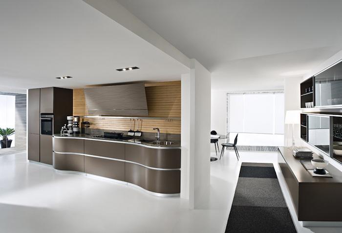 modele de cuisine, plante verte, meuble de cuisine en marron foncé avec lignes métalliques
