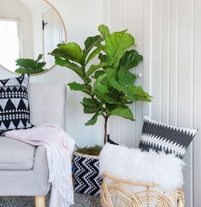eco beige et gris avec tapis cocooning en laine tricotée, canapé gris, panier en bois rangement fourrure animale blanche, plante verte miroir rond, couverture rose clair