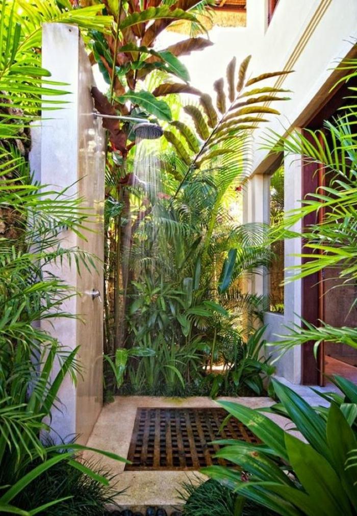 decoration salle de bain, plantes tropicales et simple douche extérieure