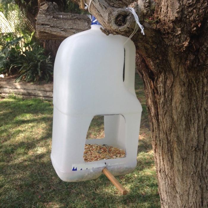 distributeur de graines, grande bouteille plastique avec de la nourriture d'oiseaux
