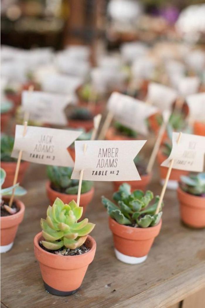 Decoration table anniversaire a faire soi meme pince porte nom petites plantes vertes