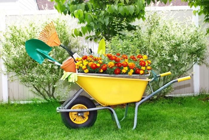 déco avec de la récup, une brouette avec des fleurs plantées dedans et outils de jardinage, idée decoration de jardin simple