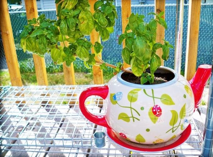 idée créative deco recup avec une théière, transformée en pot de fleur simple, decoration exterieur