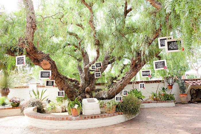 idée de plan de table mariage, grand arbre avec des petits tableaux noirs accrochés sur les branches, cadre vert