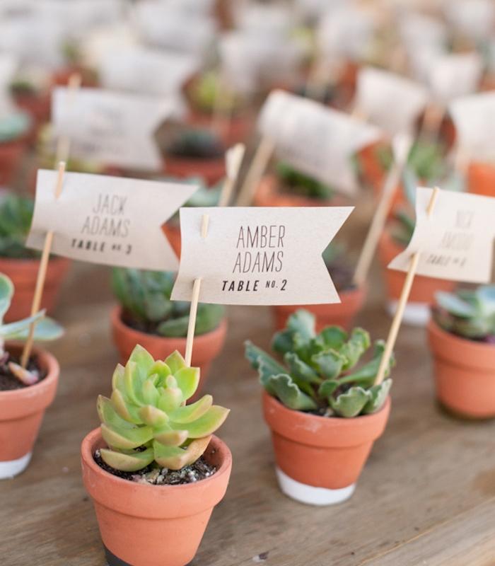 exemple de plan de table original avec petits pots de succulents et étiquettes avec noms invités sur des baguettes en bois
