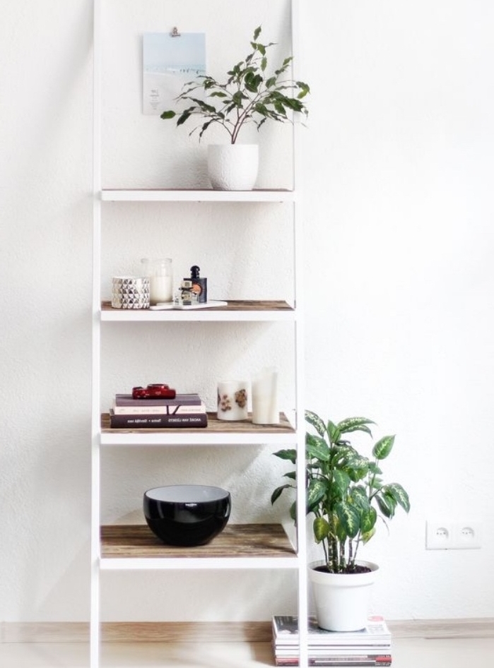 deco recup simple, une échelle blanche avec des marches en bois, étagère récup rangement accessoires déco et plantes