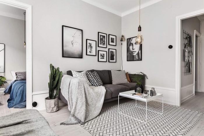 deco salon scandinave, tapis blanc et noir motifs géométriques, canapé gris, couverture gris clair, deco graphique, cadres noir et blanc, parquet clair, decoration de plantes