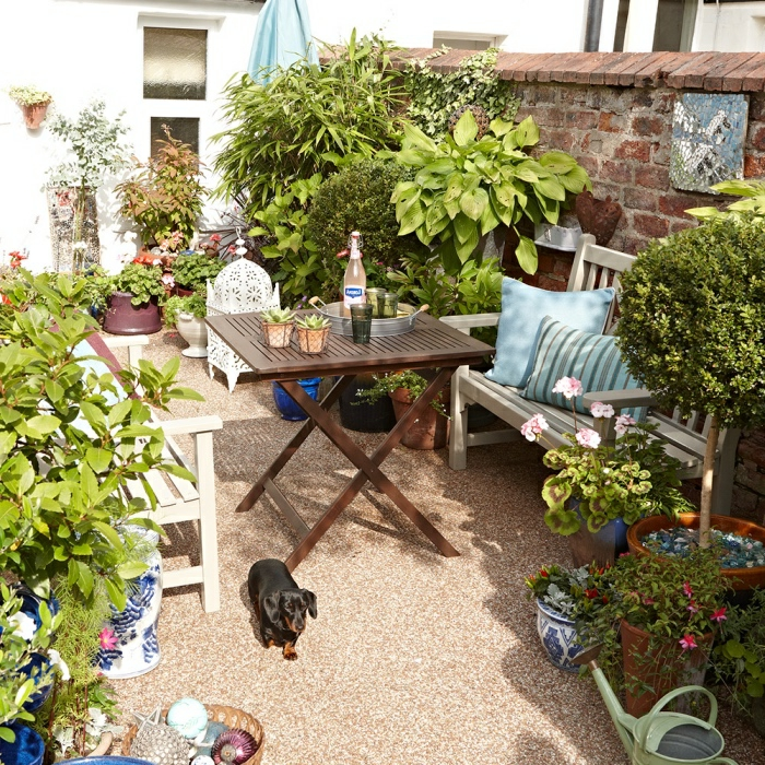 idee salon de jardin, bancs en bois blancs, table basse en bois, petits plants, arbres et fleurs dans des pots de fleurs, lanterne blanche, coussins bleus