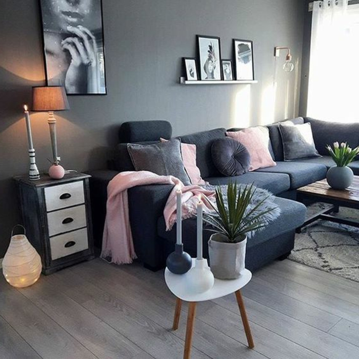 beautiful salon gris et rose contemporary amazing house. Black Bedroom Furniture Sets. Home Design Ideas