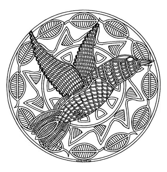 un mandala à colorier original à motif oiseaux