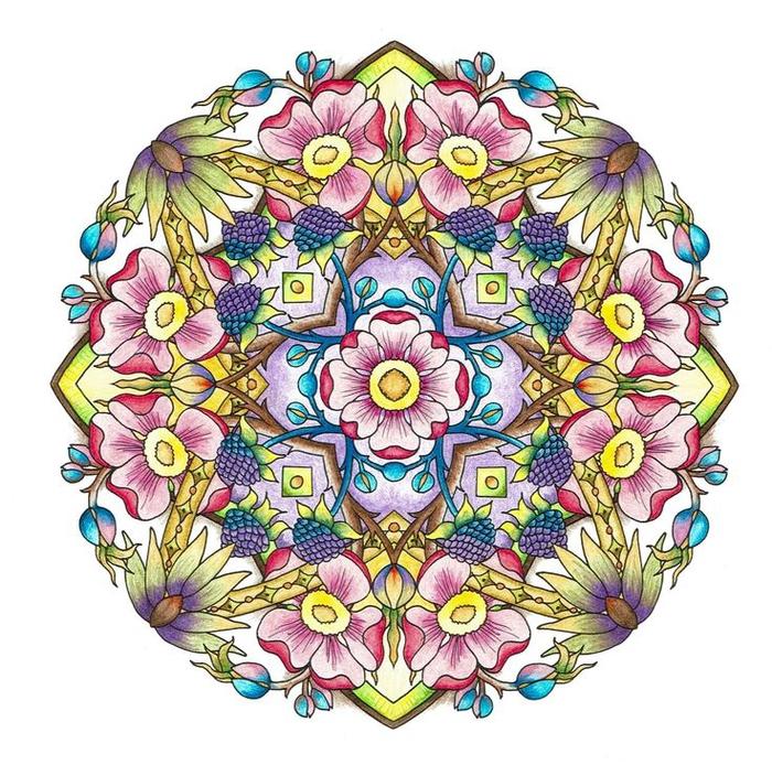 un coloriage anti stress de dessin mandala à motif jardin secret à ornements floraux
