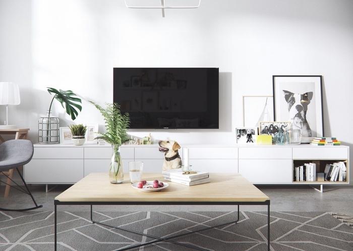 salon avec mobilier scandinave, table basse en bois et metal, meuble tv blanc avec rangements, plusieurs petits détails deco, plantes vertes
