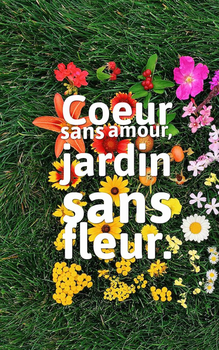 proverbe amour , écran vérouillage iphone avec fleurs et lettres inspirante, citation amour