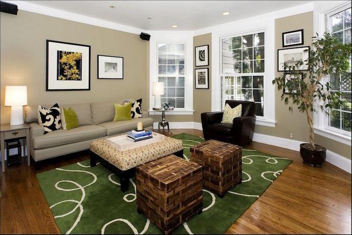 peinture salon blanc et taupe et vert association de couleurs