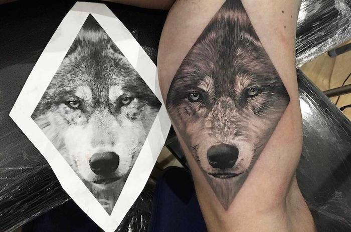 homme tatoué, photo blanc et noir visage loup, dessin sur la peau à design animal