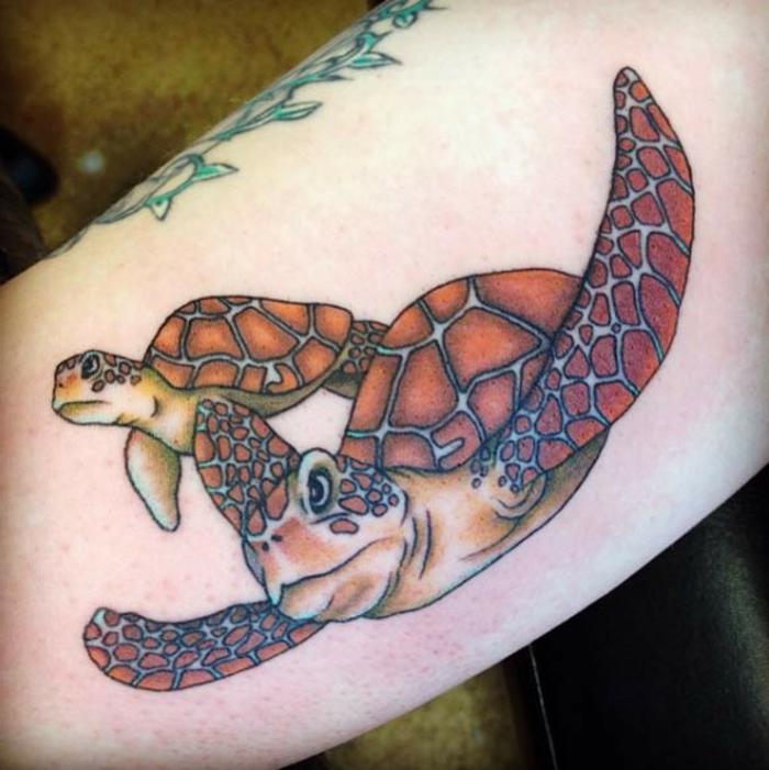 tatouage bras homme, deux tortues super sympathiques tatouées sur l'avant-bras