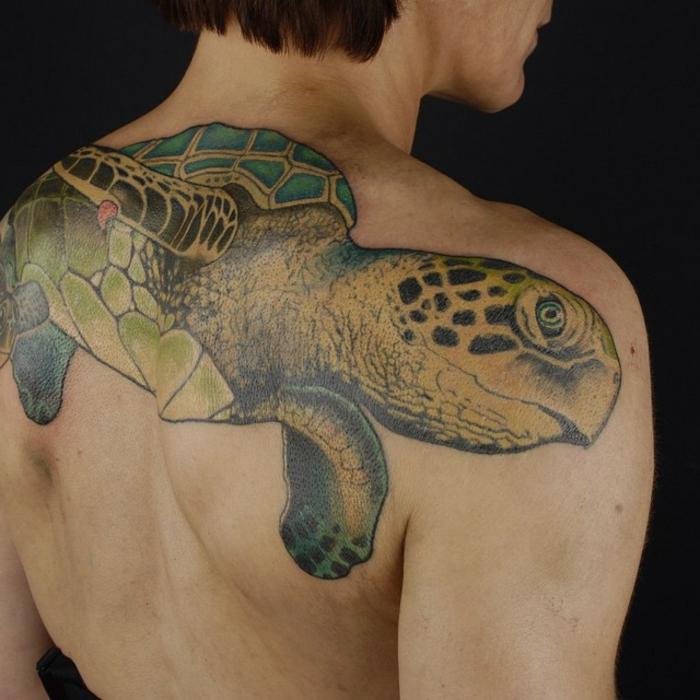 tatouage dos homme, tortue de mer géante tatouée au dos, image réalistique