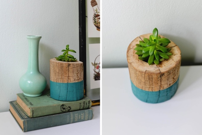 une bûche de bois avec un trou dedans pour accueillir une plante succulente, deco a faire soi meme recup, diy cache pot facile