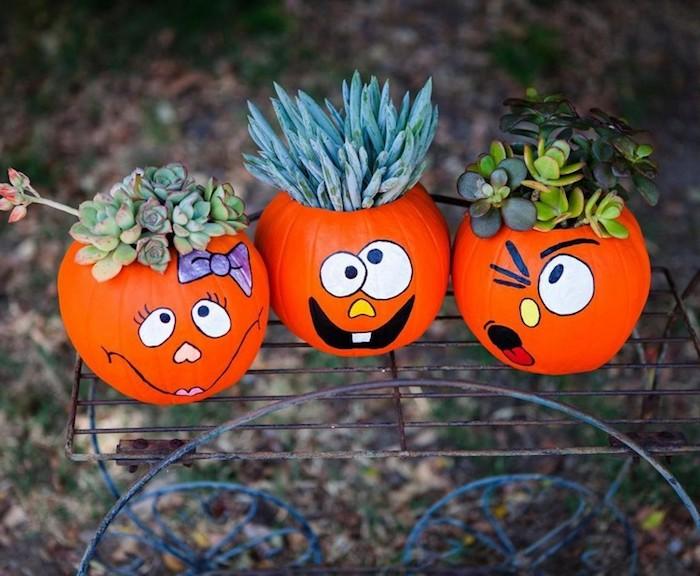 activité halloween avec des citrouilles orange et des succulents dedans, dessin visages rigolos