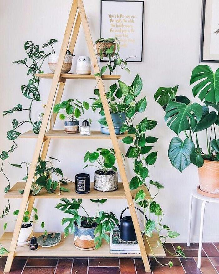 echelle deco en bois avec des étagères pour ranger des accessoires décoratifs et des pots de fleurs, mur de fond en blanc
