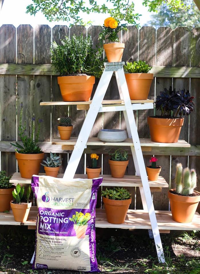 etagere echelle, exemple de jardinière en bois fabriquée à partir un escabeau repeint en blanc avec des étagères en planches de bois, pots de fleurs