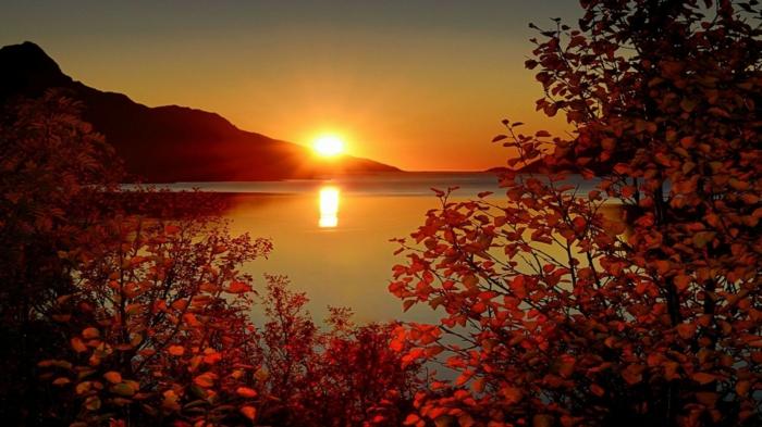 fond d'écran automne, soleil couchant au-dessus du lac, des arbres avec des feuilles rouges