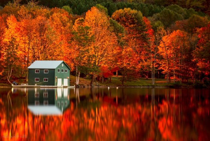 fond d'écran gratuit pour ordinateur, maison au bord du lac, jolis arbres