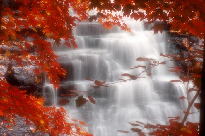 fond d'écran hd paysage, jolie cascade d'eau dans une forêt magnifique