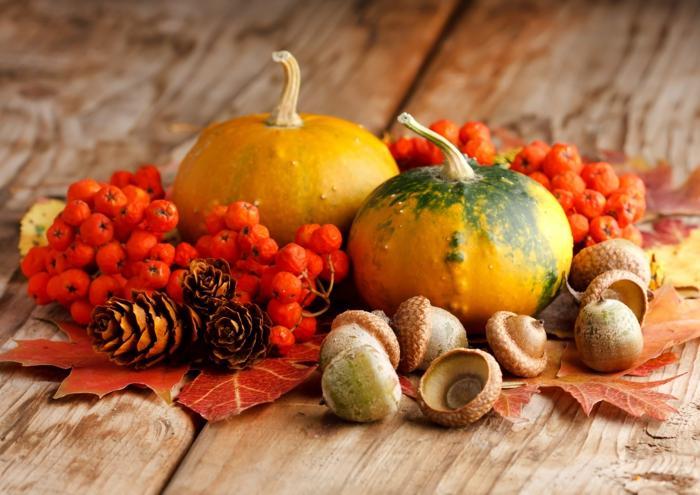 fond ecran automne, citrouilles et fruits d'automne, nature morte en plusieurs couleurs