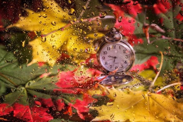 fond écran automne, horloge mécanique et feuilles sèches, composition artistique