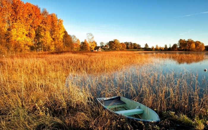 images d'automne pour fond d'écran, barque solitaire au bord d'un lac calme