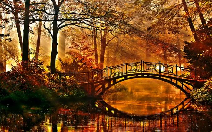 images d'automne pour fond d'écran, jardin avec un pont au-dessus d'un fleuve
