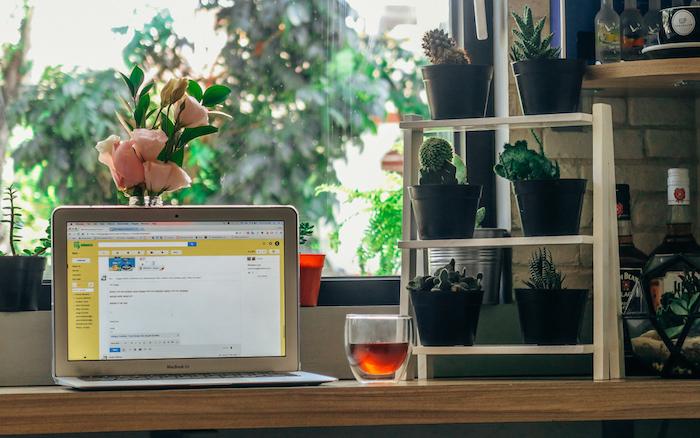 comment décorer son bureau, travaillez à domicile dans un office avec vue sur le jardin