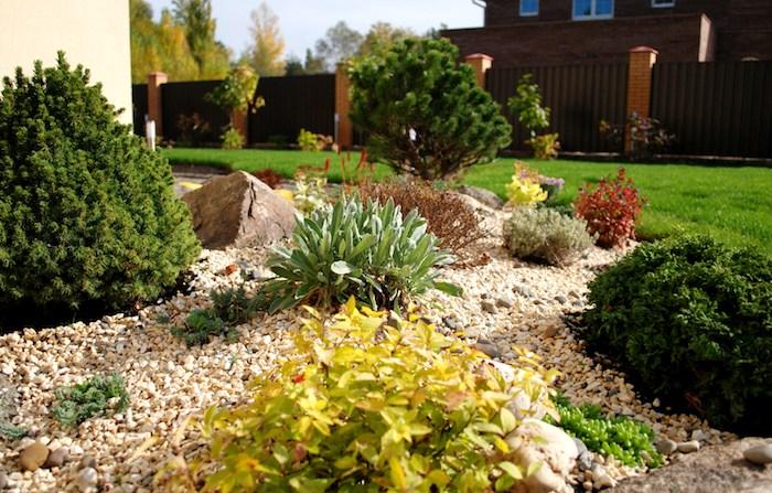 decoration exterieur, organisation de jardin avec cailloux et galets, plantes vertes et jaunes
