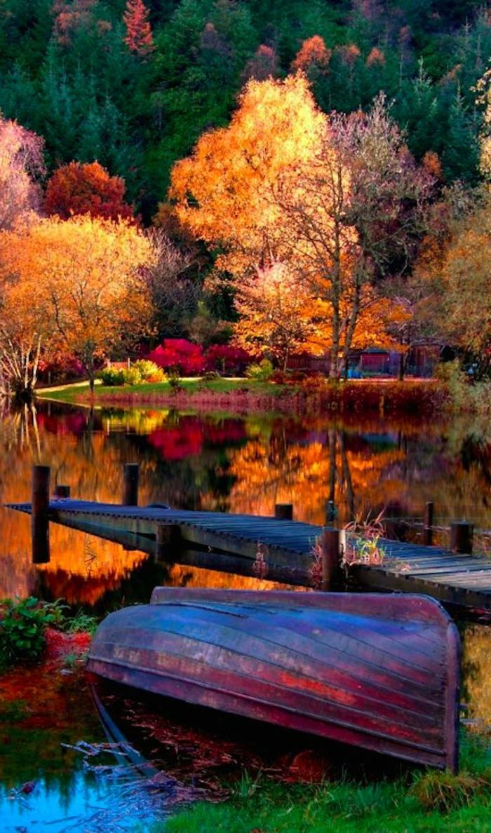 paysage automne, les arbres et leurs réflexions dans l'eau, una barque