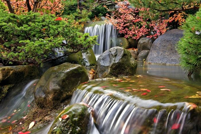 paysage automne, cascades d'eau magnifiques au sein de la forêt
