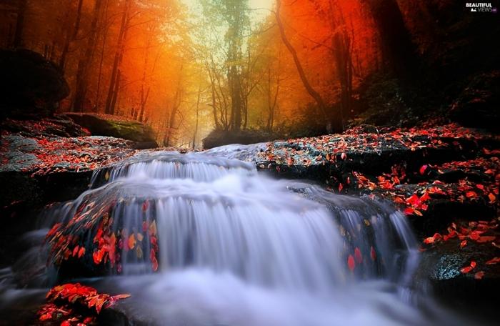 paysage automne, la lueur rouge du soleil, cascades d'eau et feuilles rouges