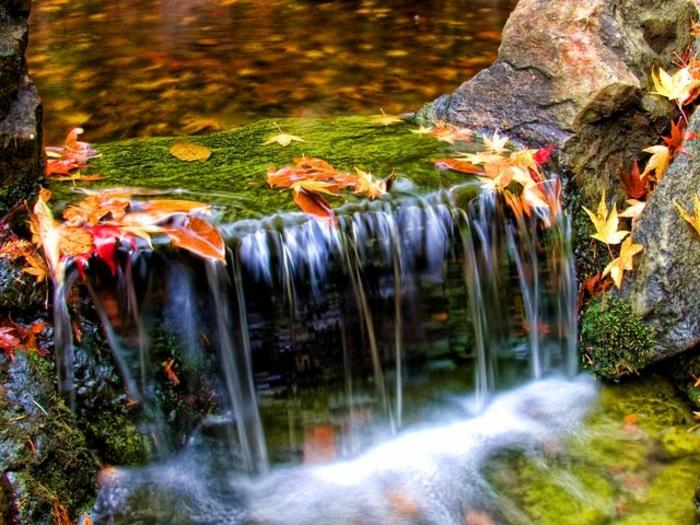 paysage automne, une grande pierre et une chute d'eau dans la forêt