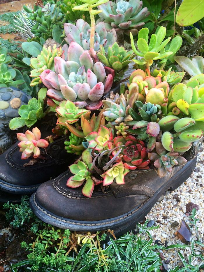 projet diy pour le jardin, plantes succulentes dans bottines masculines, déco de jardin originale