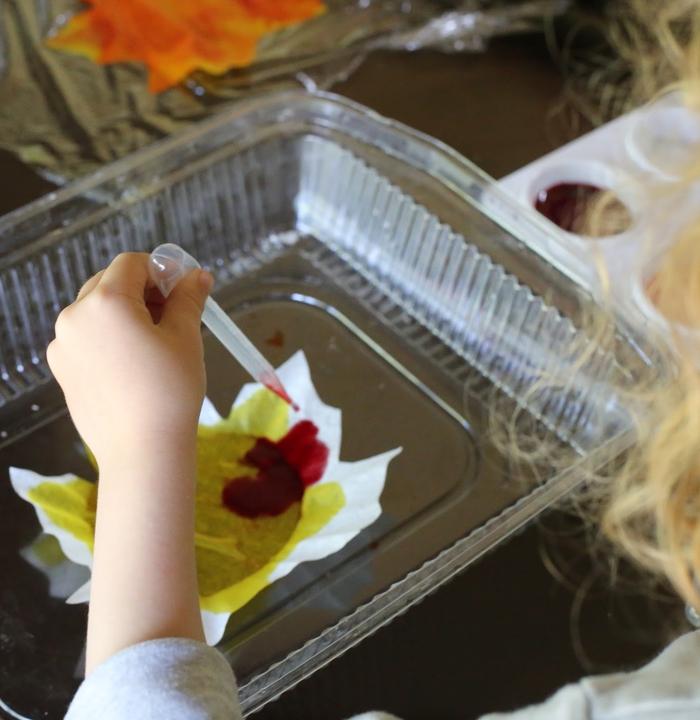 une activité manuelle facile et rapide pour occuper les enfants en automne, des capteurs de soleil diy en forme de feuilles à adhérer aux fenêtres